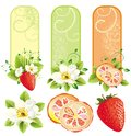 Set of banners with fruits Stock Photos