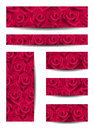 Set of banners with red roses. Royalty Free Stock Images