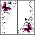 Set of beautiful corners with butterfly and decorative lines. Vector ornament for page decor. Floral frame elements Royalty Free Stock Photo