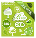 Set of bio, eco, organic elements Stock Photography