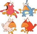 A set of birdies cartoon Royalty Free Stock Photo