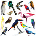 Set of birds colorful low poly design on white background Royalty Free Stock Photography