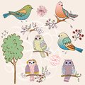 Set of birds hand drawn and owls Royalty Free Stock Images