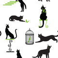 Set of black cats with green eyes and accessories in different p