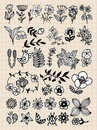 Set of black flower design elements Stock Photos