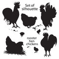 Set of black silhouette of roosters, hens and chickens.. Hand-drawn doodle Royalty Free Stock Photo