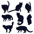 Set of black silhouettes of cats in different poses