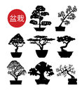 Set of black and white bonsai trees, vector