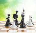 Set of black and white chess in green garden Stock Photo
