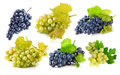 Set blue and green grapes with leaf Royalty Free Stock Photo