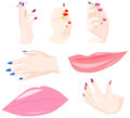 Set of body parts women s hands and lips Stock Photography