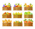 Set of Boxes With Fruits and Vegetables in Vector. Royalty Free Stock Photo