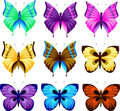Set of butterfly Royalty Free Stock Photography