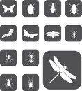 Set buttons - 24_Z. Insects Stock Image
