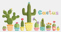 Set of cacti in pots different shapes and colors created in a fun cute style vector card Royalty Free Stock Photography