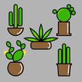 Set of cactuses in pots