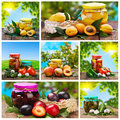 Set of canned vegetables and fruits nature Stock Photography