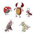 Set of cartoon bugs