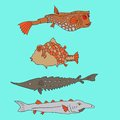 Set of cartoon fish vector illustration Royalty Free Stock Photography
