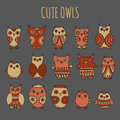 Set of cartoon owls and owlets in warm colors on a grey background