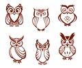 Set of cartoon owls for wisdom or education concept design all birds are isolated on white background Stock Image