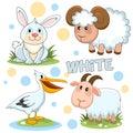 Wild animals are white 2.