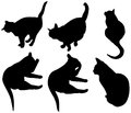 Set of cats silhouettes Stock Images