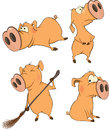 Set of cheerful pigs cartoon with the big noses Stock Images