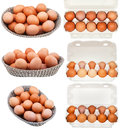 Set of chicken eggs in containers and baskets isolated on white background Royalty Free Stock Photo