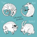 Set of the chinese zodiac signs vector illustration Royalty Free Stock Photography