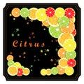 The set citrus