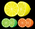 Set of citrus fruits Royalty Free Stock Image