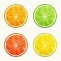 Set of citrus fruits. Orange, Lime, Grapefruit, Lemon. Royalty Free Stock Photo