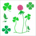 A set of clover leaves, a symbol of luck, a clover flower