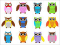 Set color owls. Stock Photos