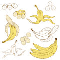 Set of colored and hand drawn bananas on the white background isolated icon Royalty Free Stock Image