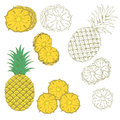 Set of colored and hand drawn pineapples on the white background isolated icon Royalty Free Stock Photos
