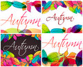 Set of colorful autumn leaves illustration Stock Photography