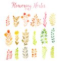 Set of colorful autumn leaves. Vector illustration.vector set of red autumn watercolor leaves and berries, hand drawn design eleme