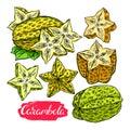 Set of colorful carambola
