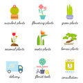 Set of colorful flat icons for Flower or Florist shop.