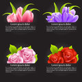 Set of colorful flower in banner illustration Royalty Free Stock Photo