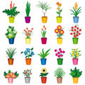 Set of colorful pots of flowers Royalty Free Stock Photo