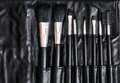 Set of cosmetic brushes in black leather bag skin care beauty and fashion beauty salon makeup brush Stock Images