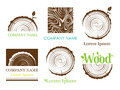 Set a cross section of the trunk with tree rings. Vector. Logo. Tree growth rings