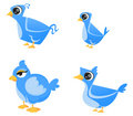 Set of cute birds Royalty Free Stock Photography