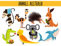 Set of Cute cartoon Animals and birds of Australia and its ostrovov. Kangaroo, possum, numbat, the Koala bear, EMU, parrot, alliga Royalty Free Stock Photo