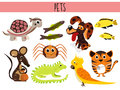 Set of Cute cartoon Animals and birds Pets. Turtle, spider, cat, dog, aquarium fish, iguana, lizard, and parrot mouse . Vector Royalty Free Stock Photo