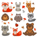 Set of cute cartoon forest animals. Royalty Free Stock Photo