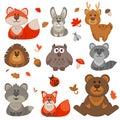 Set of cute cartoon forest animals.